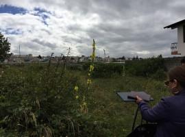 Constructores: hermoso terreno para proyecto habitacional